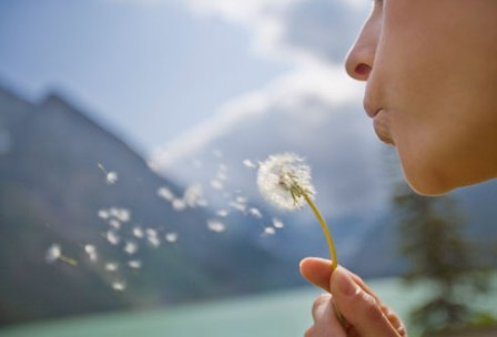 getty_rm_photo_of_woman_with_dandelion